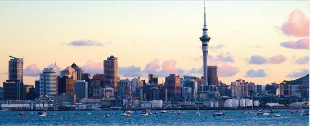 NZニュース記事
